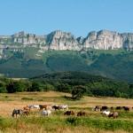 Montes de la Peña